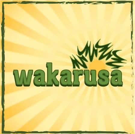 Wakarusa 2014